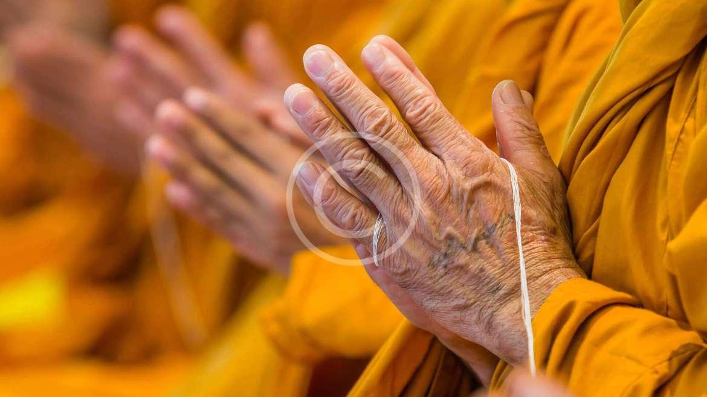 Learn the Dharma